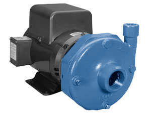 22BF1F4H0 - Goulds Pumps 3656 S Centrifugal Pump